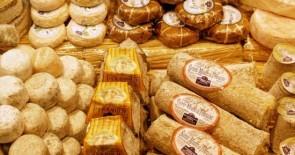 Die Theke für alle Käseliebhaber