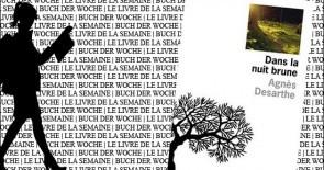 """""""Dans la nuit brune"""" d'Agnès Desarthe"""