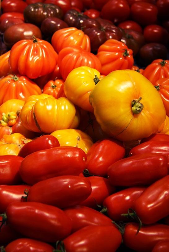 GLafayetteB15_Saveol-Tomaten2_