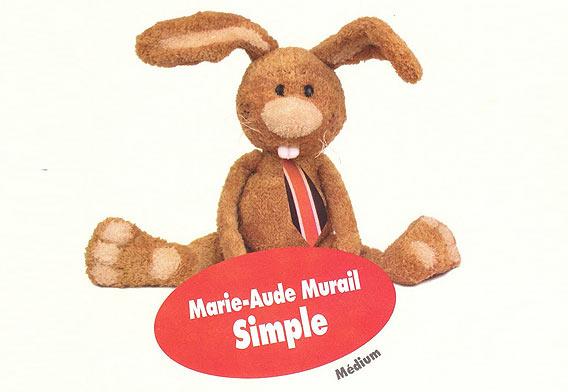 """Buchtipp: """"Simple"""" von Marie-Aude Murail bei Lafayette Livres Berlin"""
