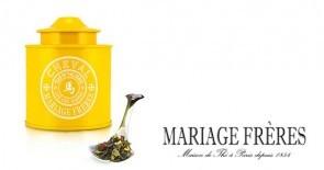 Tee im Jahr der Pferdes: THÉ DES SIGNES® – CHEVAL von Mariage Frères