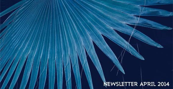 VOILA | Newsletter | Frühjahr/Sommer 2014 | Galeries Lafayette Berlin