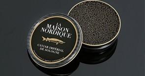La Maison Nordique – schwarzes Gold auf einem Löffel