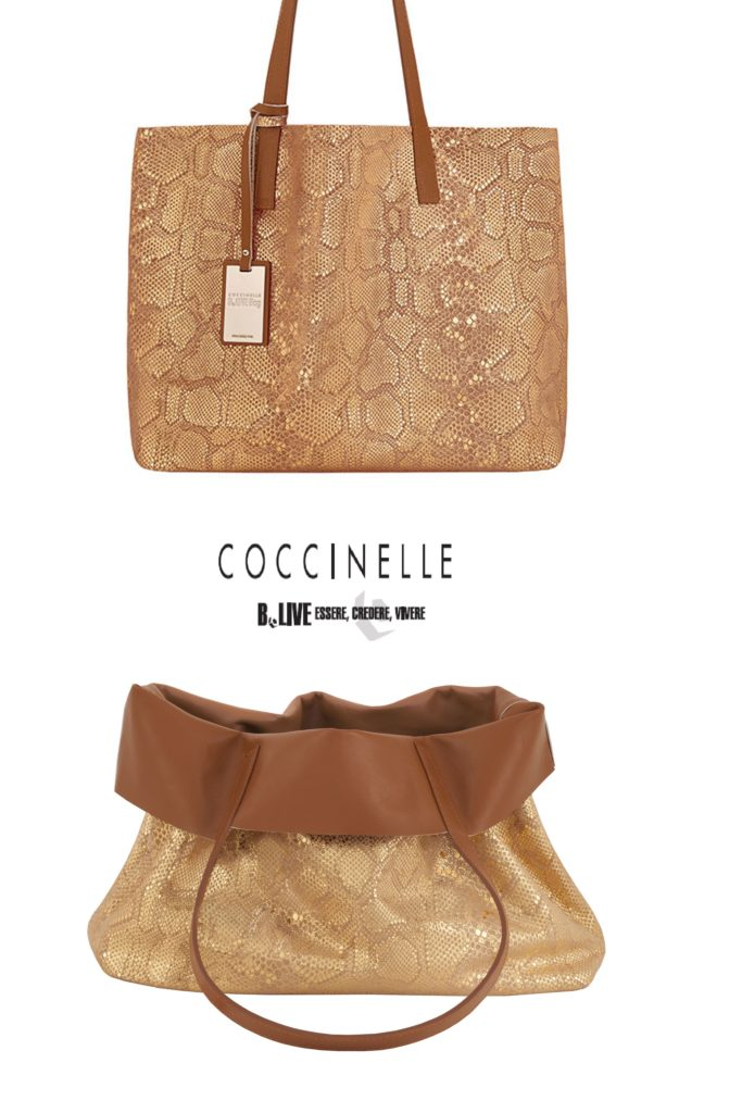 Lafayette_Coccinelle