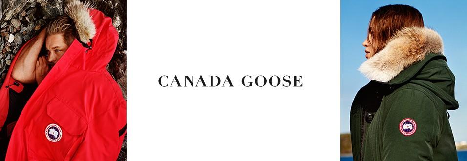GLafayetteB16_Canada Goose Banner