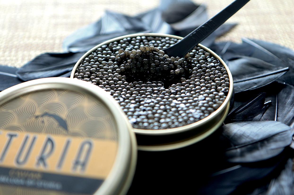 kaviar in berlin sturia aus frankreich galeries lafayette berlin. Black Bedroom Furniture Sets. Home Design Ideas