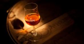 Hennessy Cognac-Seminar am 17.04.