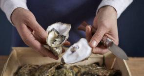 "Wieder da: Austern ""to go"" für je 1,50€"